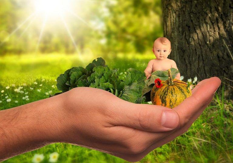Cuối Cùng Bí Mật Giúp Trẻ Biếng Ăn Đã Được Tiết Lộ